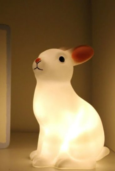 Natlampe-kanin