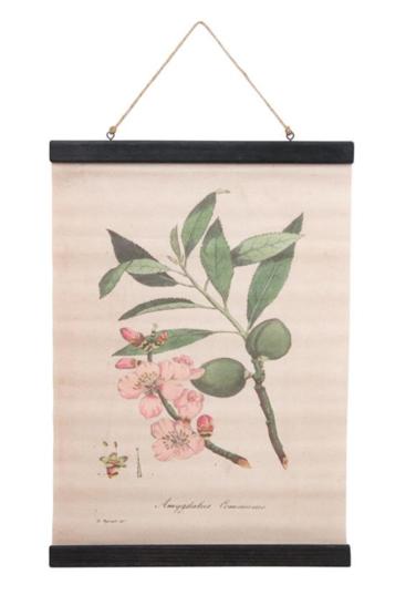 Wall-hanger-mandeltræ