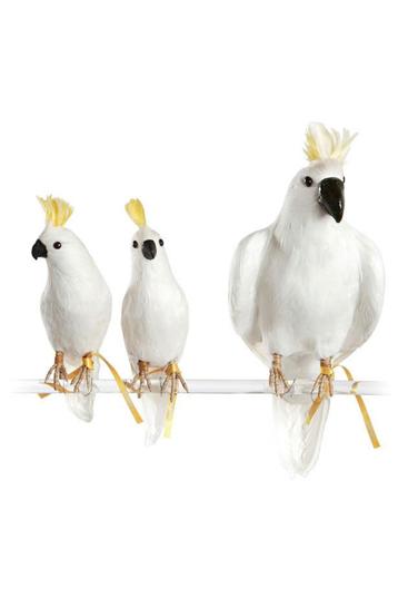 Hvid-kakadue-fra-Puebco