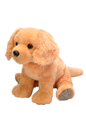 golden-retriever-bamse