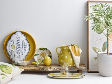 skaale-og-krukker-med-citroner