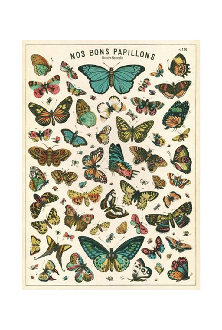 butterfly-wrap