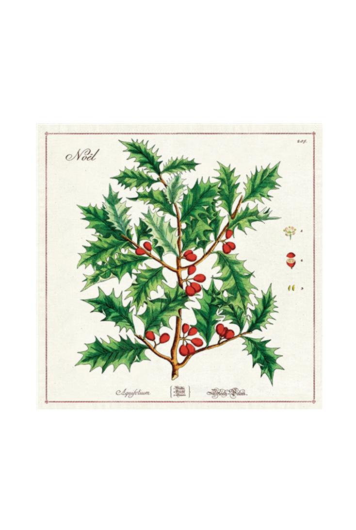 npkn-christmas-holly