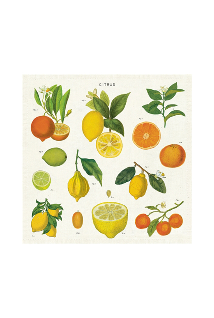 npkn-citrus