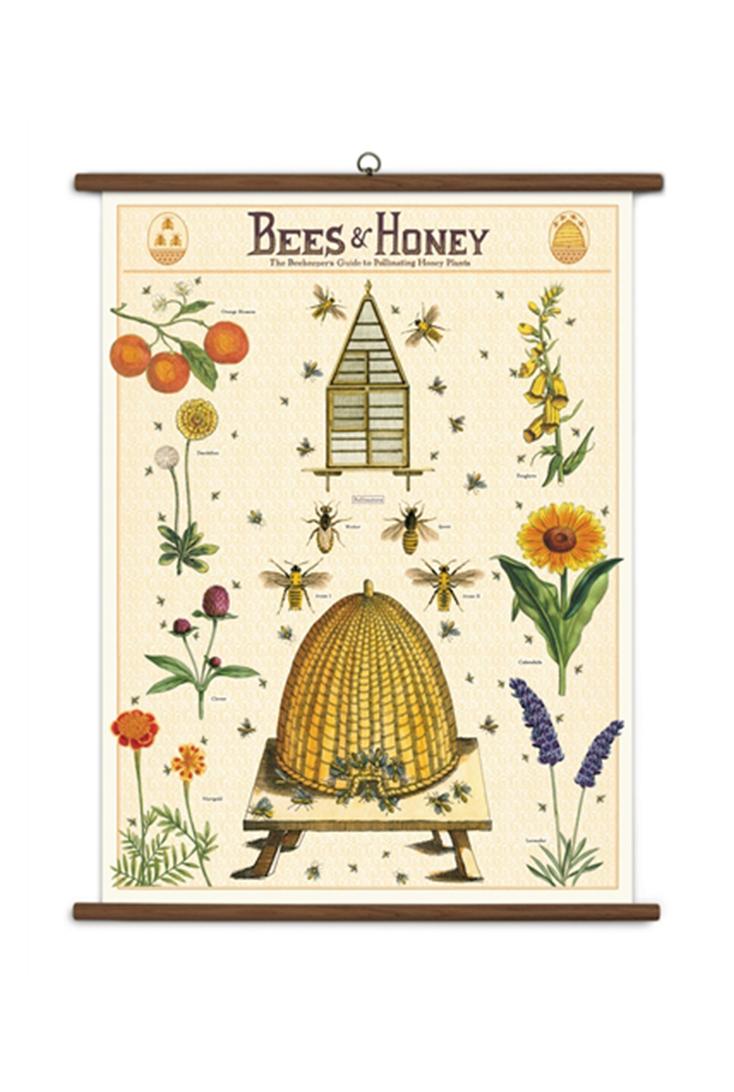 school-bees