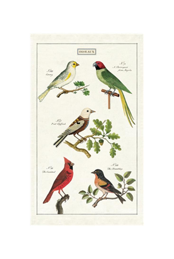 tt-birds