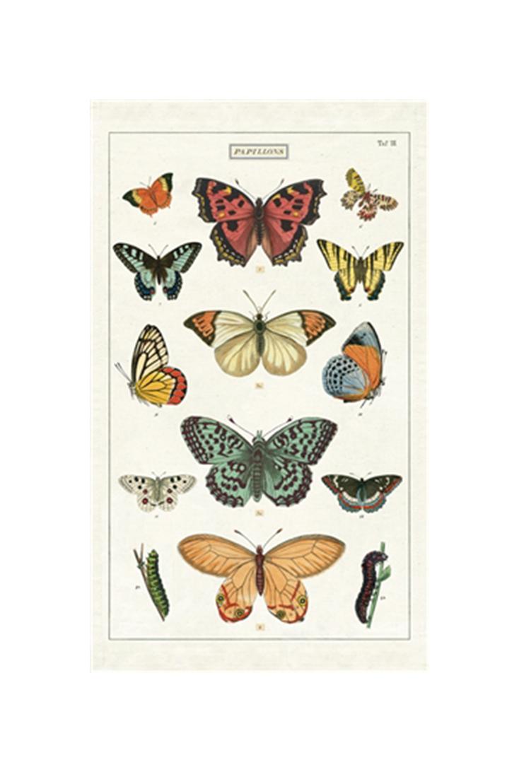tt-butterflies
