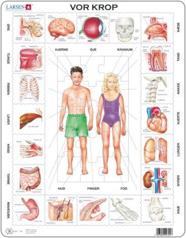 puslespil-med-kroppen