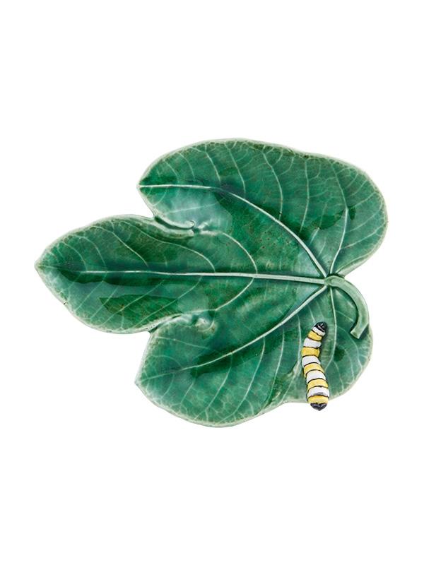 skaal-med-sommerfuglelarve
