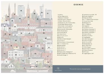 Oversigt-Odense
