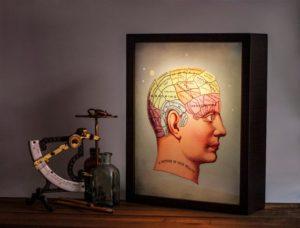 phrenology-lightbox-skilt