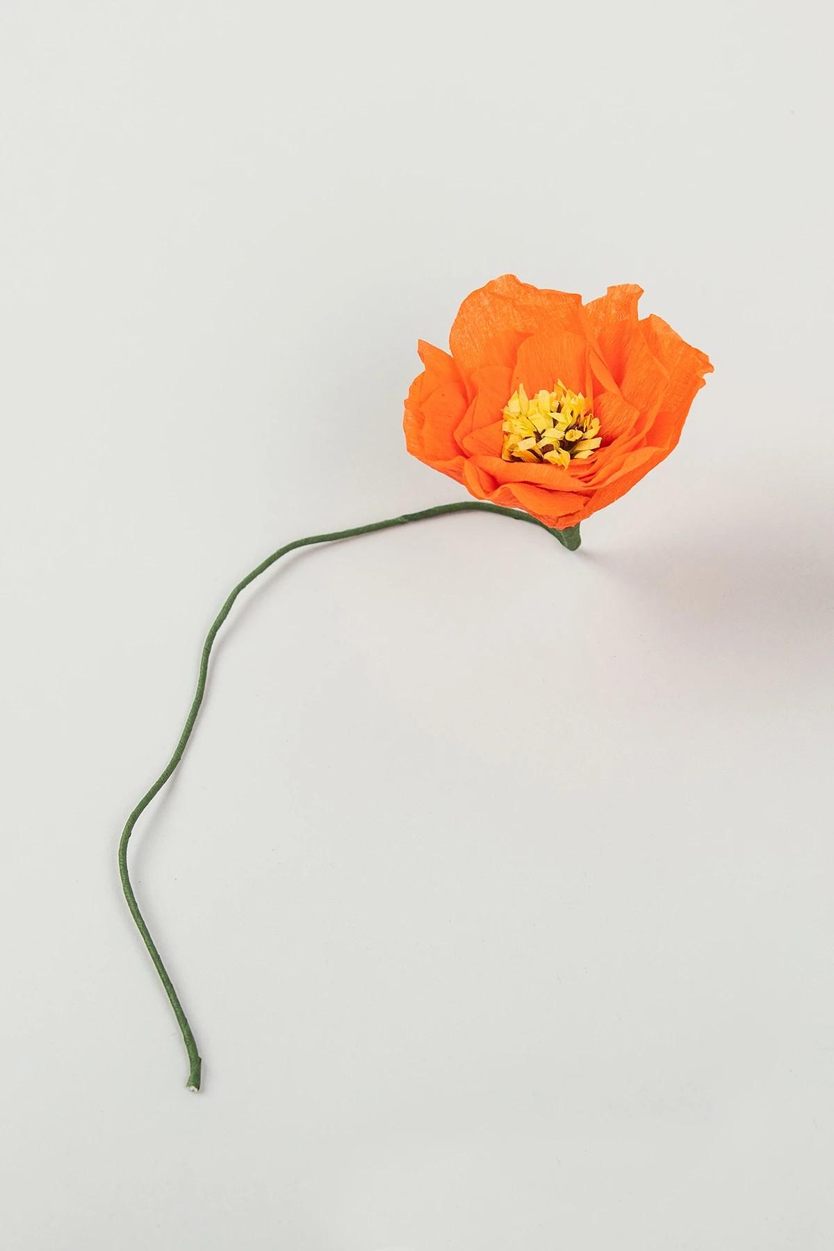 poppy-red
