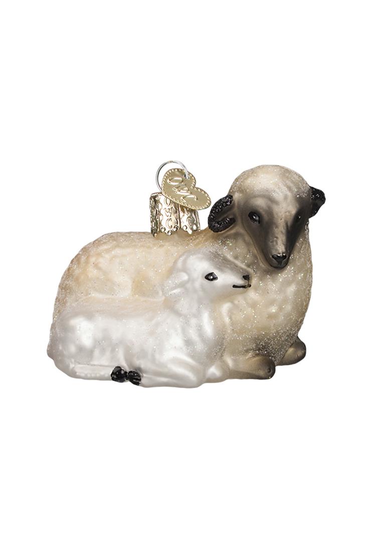 12414-sheep-lamb-ophaeng