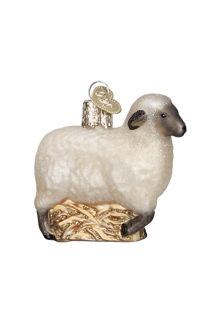 12415-sheep