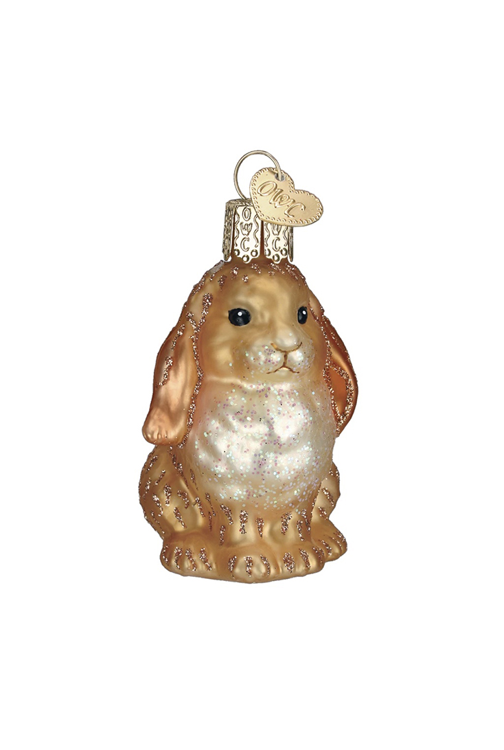 brun-baby-kanin